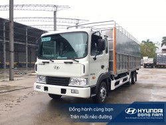 Hyundai HD240 thùng mui bạt